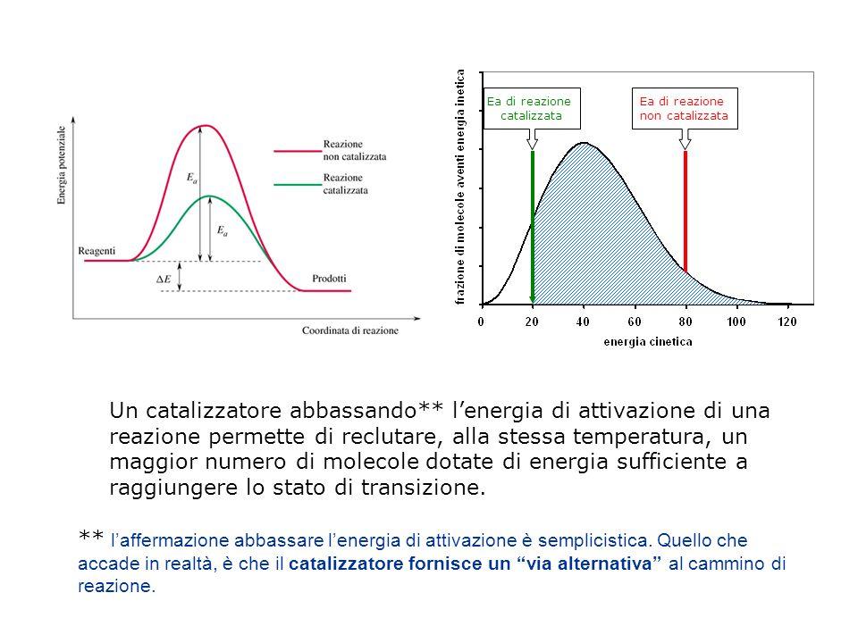 Ea di reazione non catalizzata Ea di reazione catalizzata Un catalizzatore abbassando** lenergia di attivazione di una reazione permette di reclutare, alla stessa temperatura, un maggior numero di molecole dotate di energia sufficiente a raggiungere lo stato di transizione.