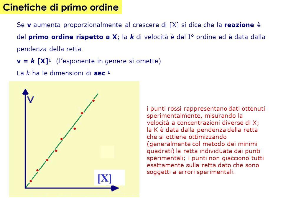 Se v aumenta proporzionalmente al crescere di [X] si dice che la reazione è del primo ordine rispetto a X; la k di velocità è del I° ordine ed è data dalla pendenza della retta v = k [X] 1 (lesponente in genere si omette) La k ha le dimensioni di sec -1 i punti rossi rappresentano dati ottenuti sperimentalmente, misurando la velocità a concentrazioni diverse di X; la K è data dalla pendenza della retta che si ottiene ottimizzando (generalmente col metodo dei minimi quadrati) la retta individuata dai punti sperimentali; i punti non giacciono tutti esattamente sulla retta dato che sono soggetti a errori sperimentali.