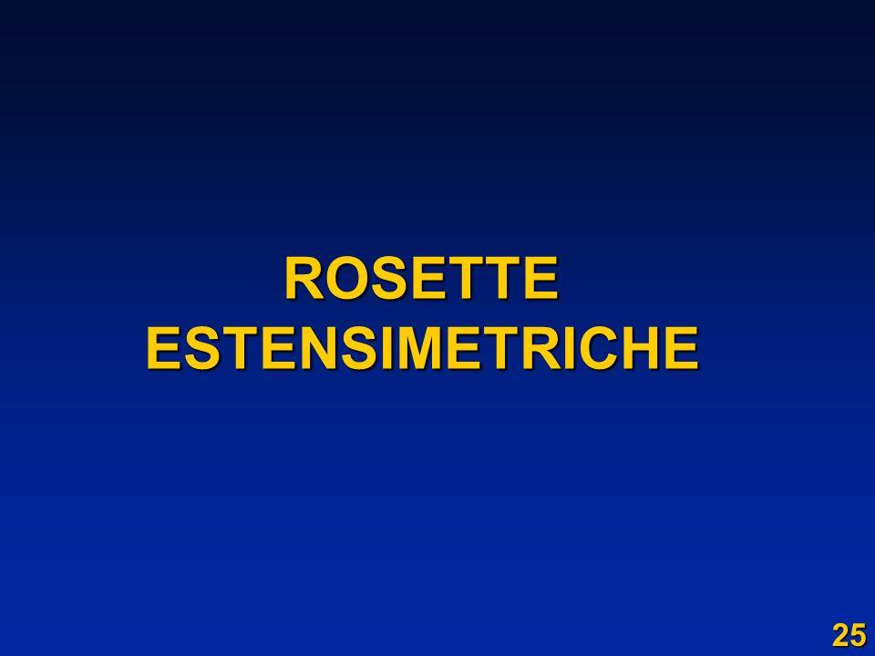 ROSETTEESTENSIMETRICHE 25