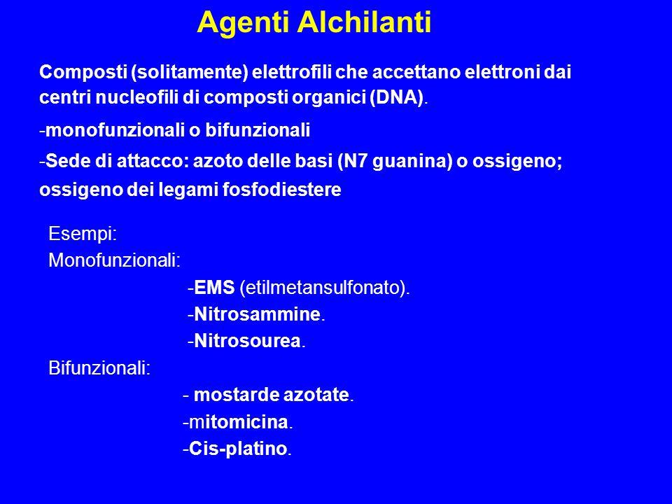 Composti (solitamente) elettrofili che accettano elettroni dai centri nucleofili di composti organici (DNA). -monofunzionali o bifunzionali -Sede di a