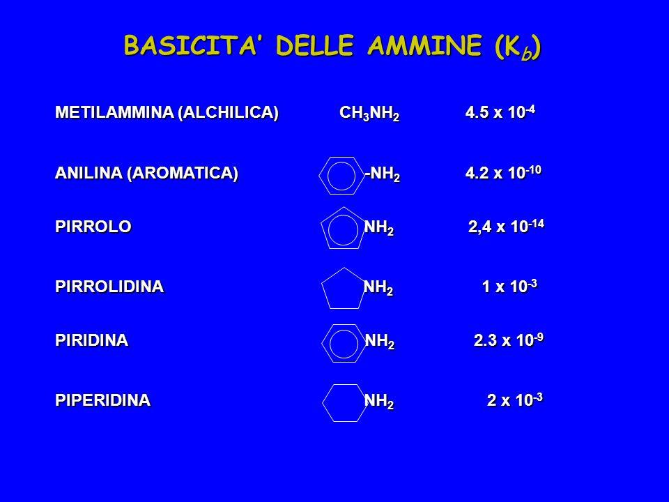 METILAMMINA (ALCHILICA) CH 3 NH 2 4.5 x 10 -4 ANILINA (AROMATICA) -NH 2 4.2 x 10 -10 PIRROLO NH 2 2,4 x 10 -14 PIRROLIDINA NH 2 1 x 10 -3 PIRIDINA NH 2 2.3 x 10 -9 PIPERIDINA NH 2 2 x 10 -3 BASICITA DELLE AMMINE (K b )
