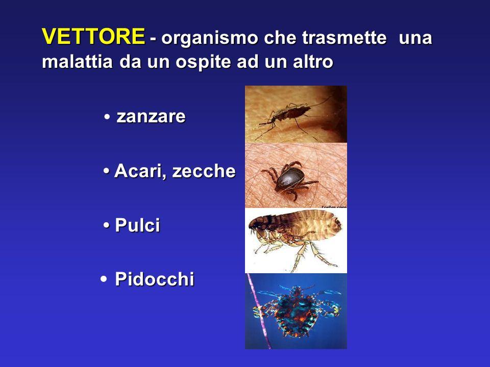 VETTORE - organismo che trasmette una malattia da un ospite ad un altro zanzare Acari, zecche Acari, zecche Pulci Pulci Pidocchi