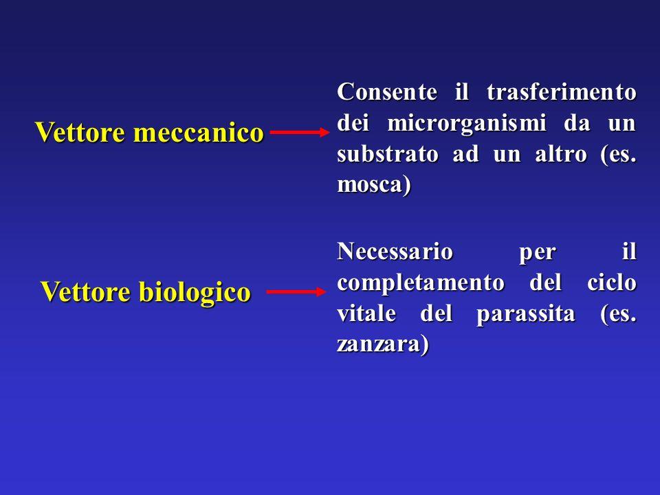 Vettore meccanico Vettore biologico Necessario per il completamento del ciclo vitale del parassita (es. zanzara) Consente il trasferimento dei microrg