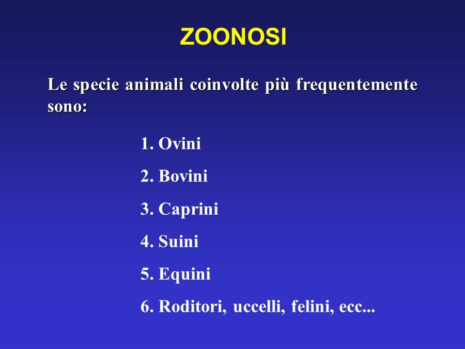 ZOONOSI Le specie animali coinvolte più frequentemente sono: 1. Ovini 2. Bovini 3. Caprini 4. Suini 5. Equini 6. Roditori, uccelli, felini, ecc...