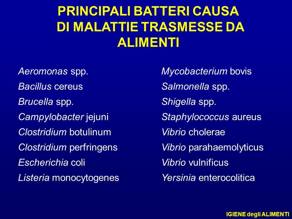 PRINCIPALI BATTERI CAUSA DI MALATTIE TRASMESSE DA ALIMENTI Aeromonas spp. Bacillus cereus Brucella spp. Campylobacter jejuni Clostridium botulinum Clo