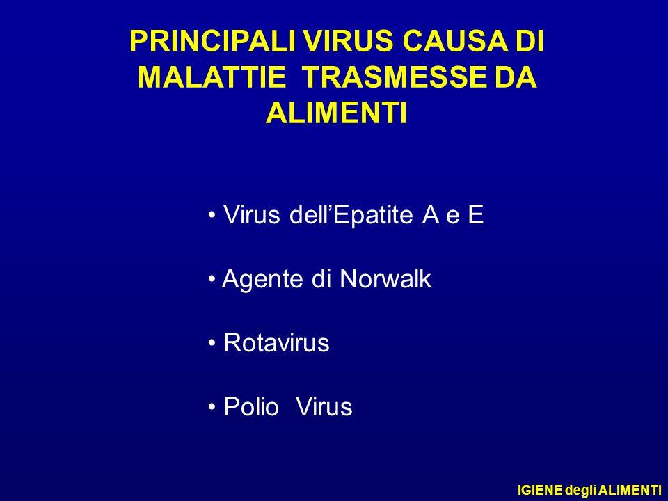 PRINCIPALI VIRUS CAUSA DI MALATTIE TRASMESSE DA ALIMENTI Virus dellEpatite A e E Agente di Norwalk Rotavirus Polio Virus IGIENE degli ALIMENTI