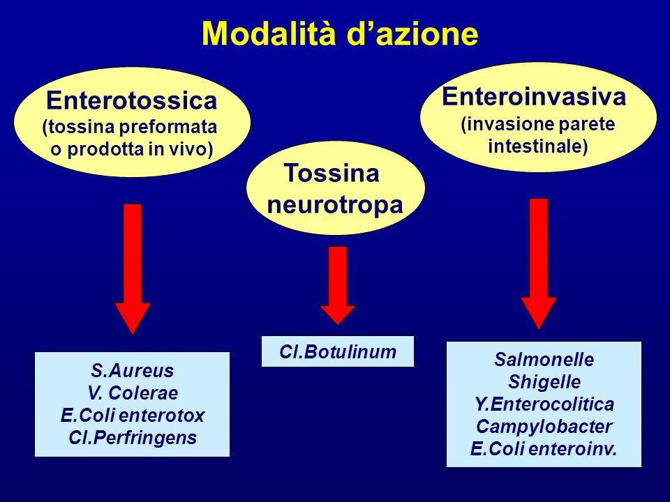 Modalità dazione Enterotossica (tossina preformata o prodotta in vivo) S.Aureus V. Colerae E.Coli enterotox Cl.Perfringens Enteroinvasiva (invasione p