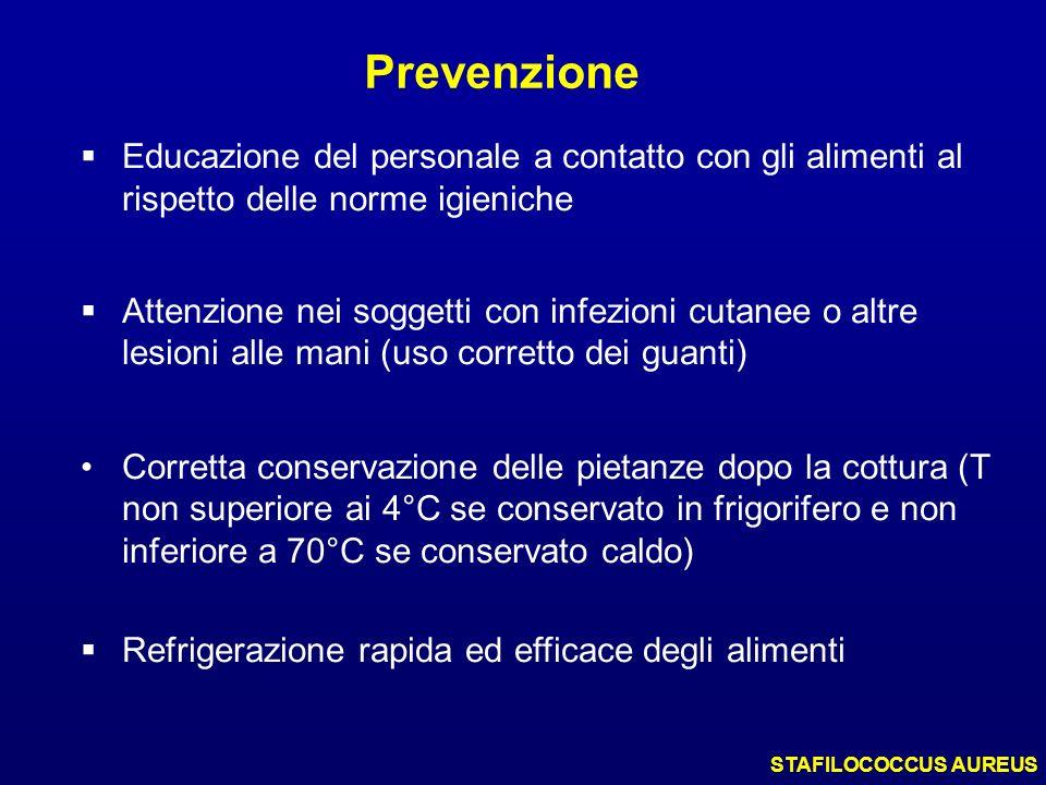 Prevenzione Educazione del personale a contatto con gli alimenti al rispetto delle norme igieniche Attenzione nei soggetti con infezioni cutanee o alt