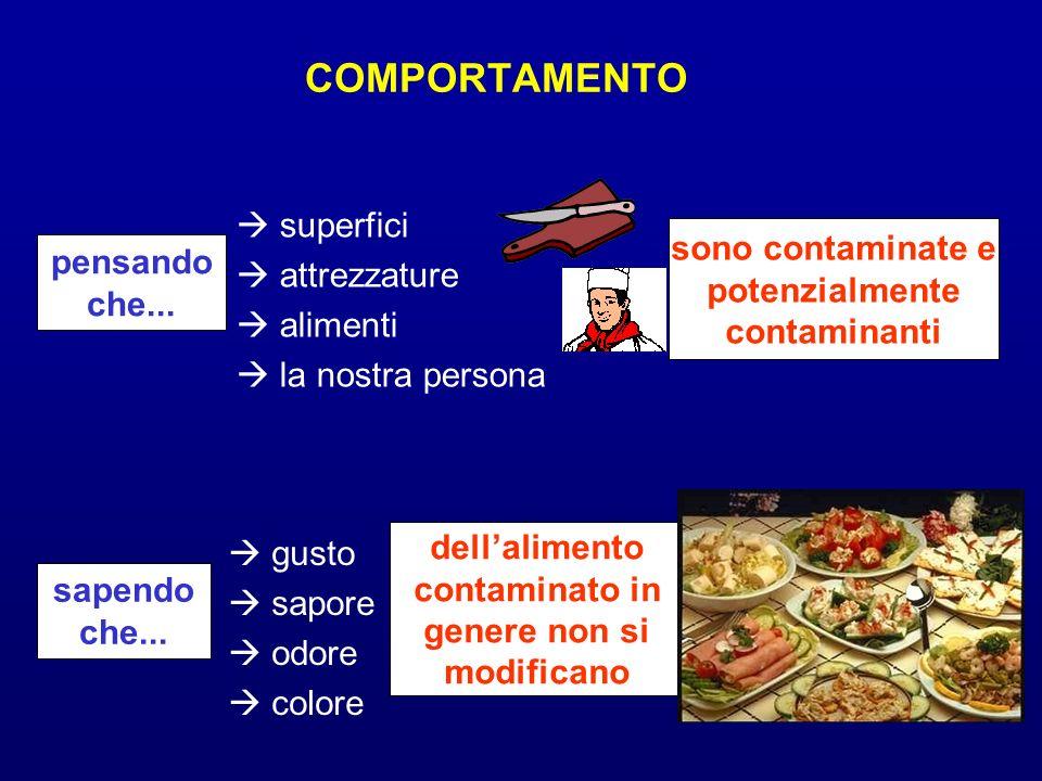 pensando che... superfici attrezzature alimenti la nostra persona sono contaminate e potenzialmente contaminanti sapendo che... gusto sapore odore col