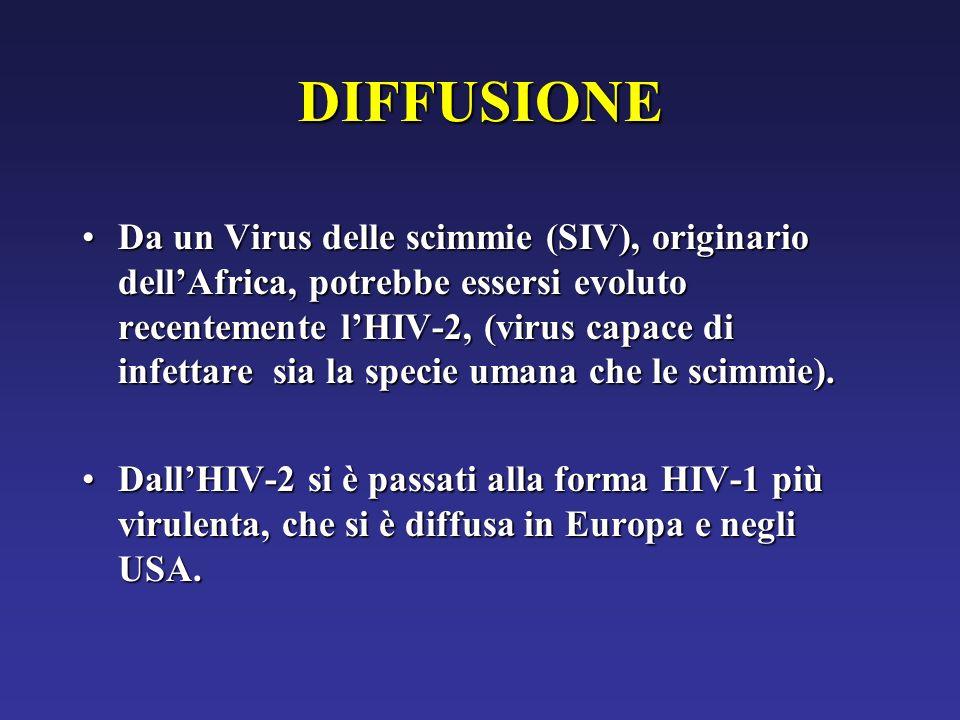 DIFFUSIONE Da un Virus delle scimmie (SIV), originario dellAfrica, potrebbe essersi evoluto recentemente lHIV-2, (virus capace di infettare sia la spe