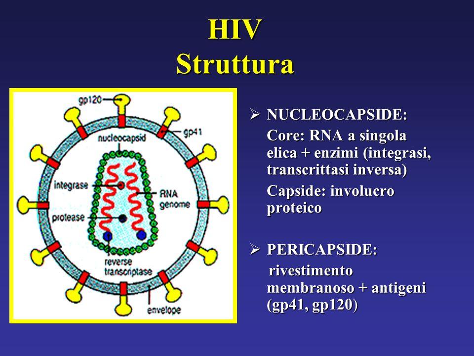 HIV Struttura NUCLEOCAPSIDE: NUCLEOCAPSIDE: Core: RNA a singola elica + enzimi (integrasi, transcrittasi inversa) Capside: involucro proteico PERICAPSIDE: PERICAPSIDE: rivestimento membranoso + antigeni (gp41, gp120) rivestimento membranoso + antigeni (gp41, gp120)