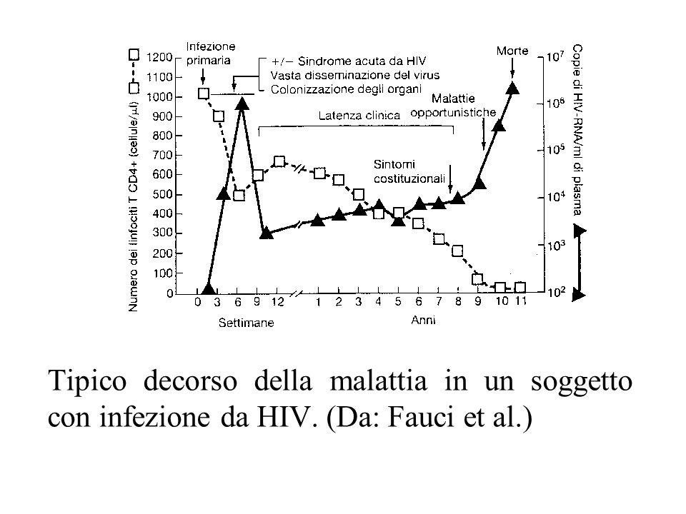 Tipico decorso della malattia in un soggetto con infezione da HIV. (Da: Fauci et al.)