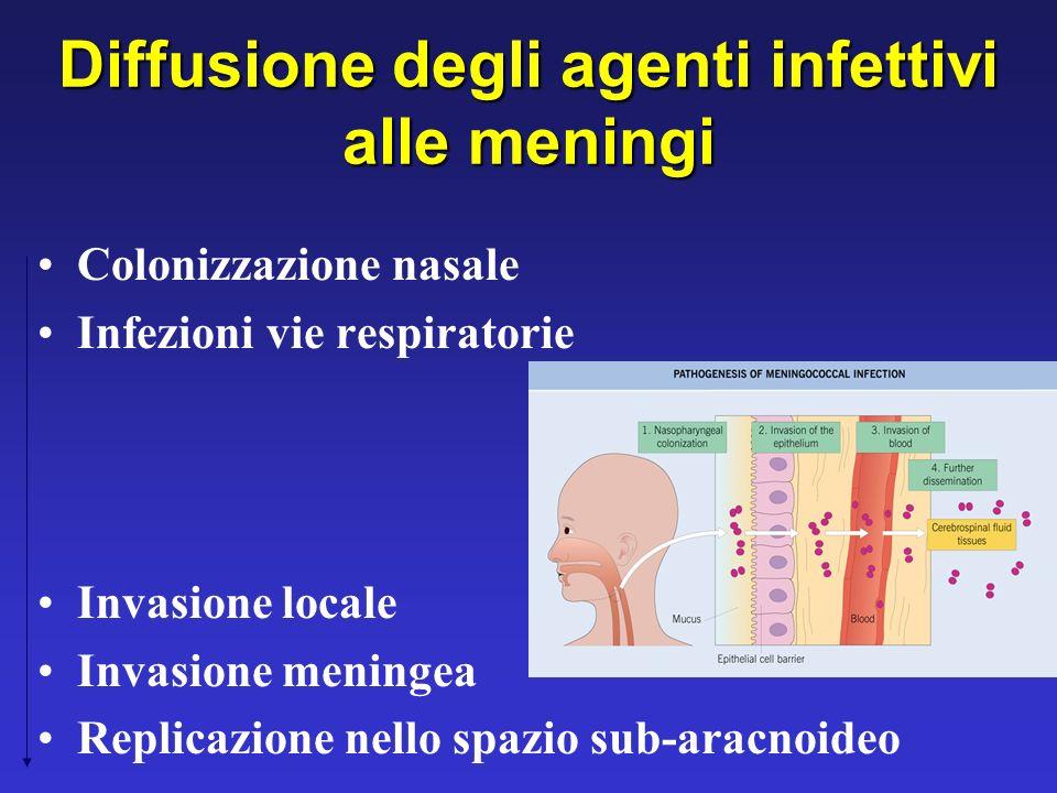 Diffusione degli agenti infettivi alle meningi Colonizzazione nasale Infezioni vie respiratorie Invasione locale Invasione meningea Replicazione nello
