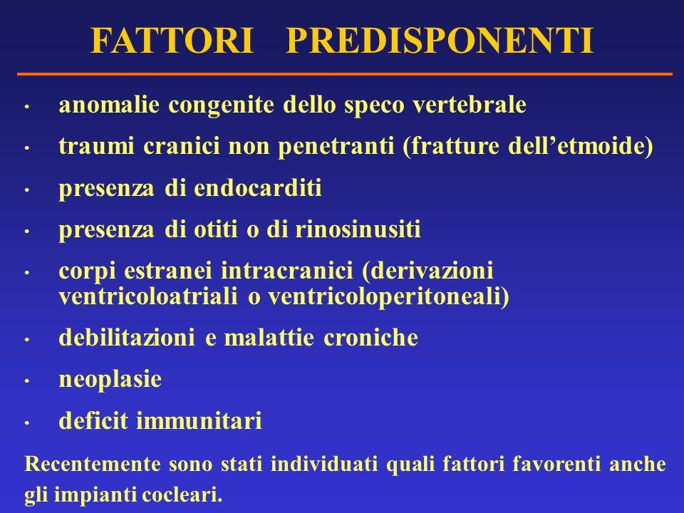 FATTORI PREDISPONENTI anomalie congenite dello speco vertebrale traumi cranici non penetranti (fratture delletmoide) presenza di endocarditi presenza