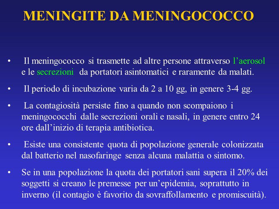 MENINGITE DA MENINGOCOCCO Il meningococco si trasmette ad altre persone attraverso laerosol e le secrezioni da portatori asintomatici e raramente da m