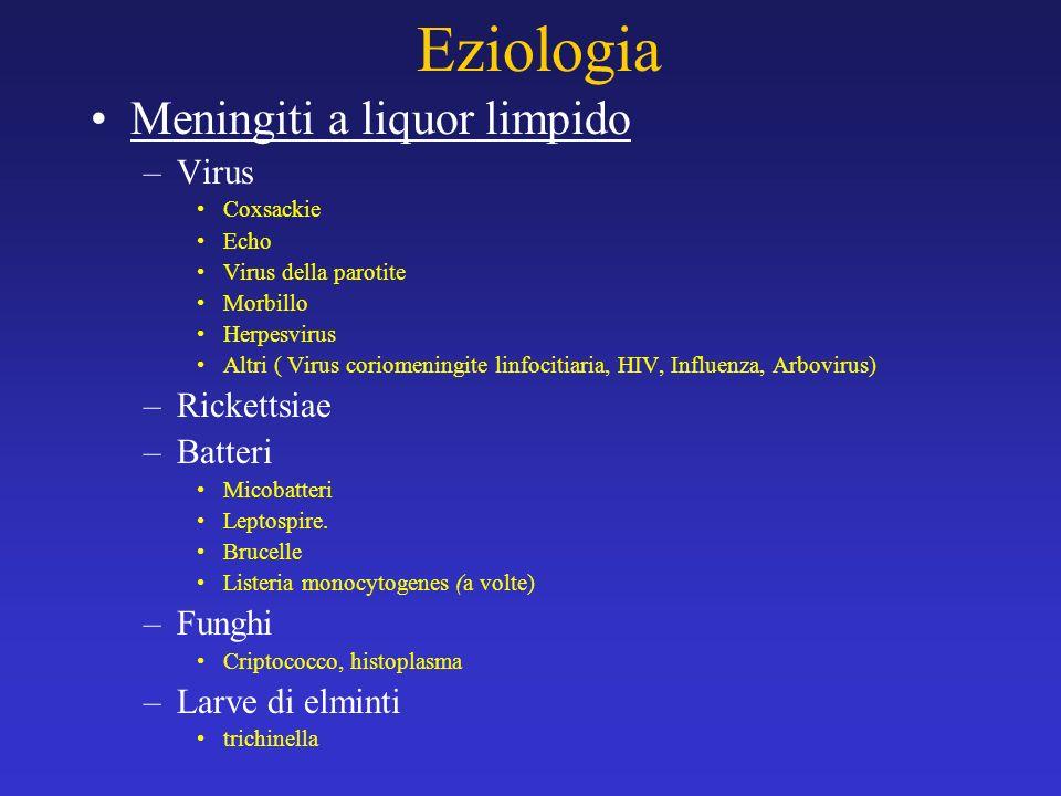 Eziologia Meningiti a liquor limpido –Virus Coxsackie Echo Virus della parotite Morbillo Herpesvirus Altri ( Virus coriomeningite linfocitiaria, HIV,