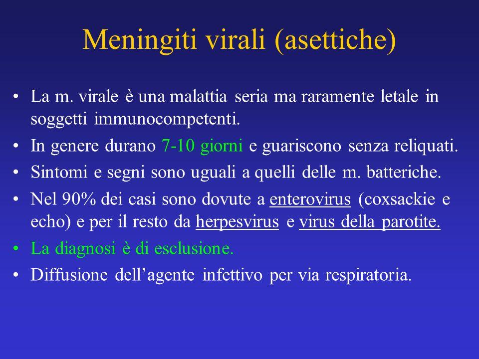 Meningiti virali (asettiche) La m. virale è una malattia seria ma raramente letale in soggetti immunocompetenti. In genere durano 7-10 giorni e guaris