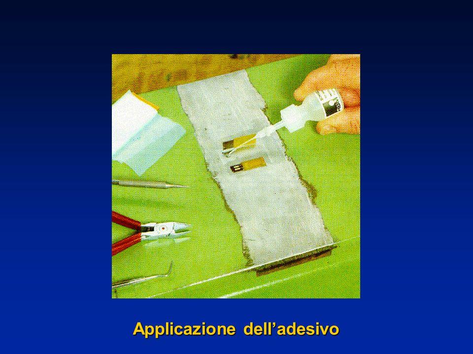 Applicazione delladesivo