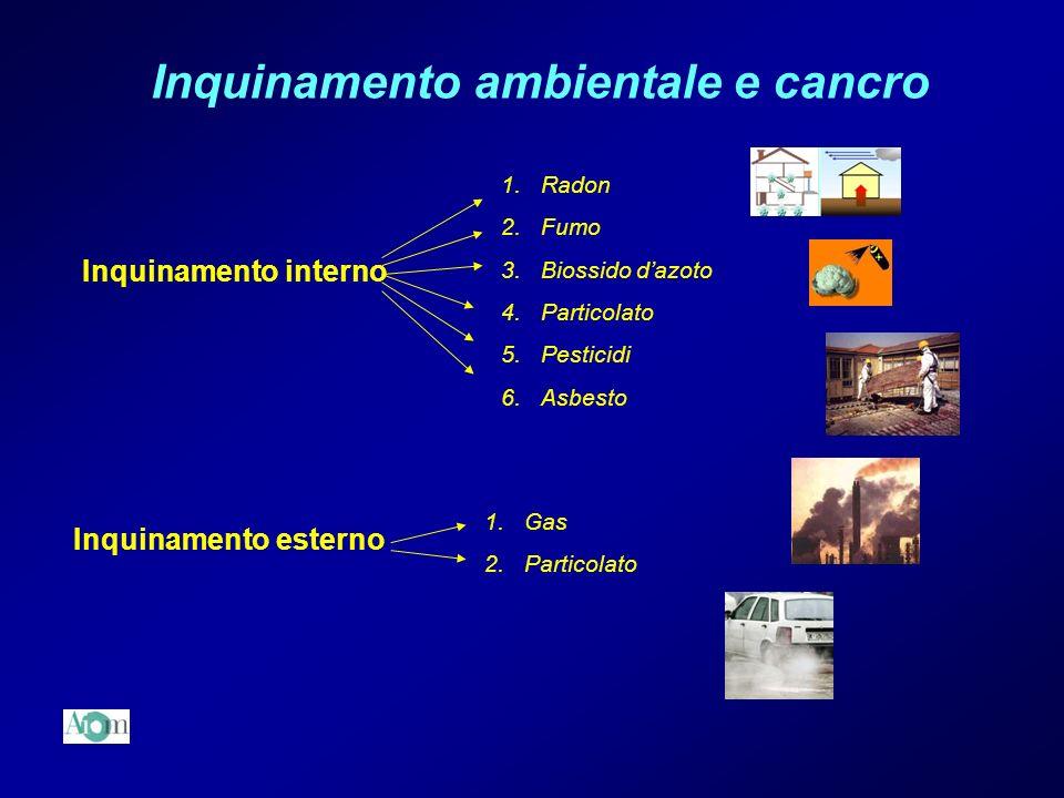 Inquinamento ambientale e cancro Inquinamento interno Inquinamento esterno 1.Radon 2.Fumo 3.Biossido dazoto 4.Particolato 5.Pesticidi 6.Asbesto 1.Gas