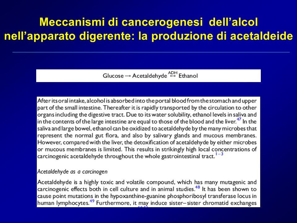 Meccanismi di cancerogenesi dellalcol nellapparato digerente: la produzione di acetaldeide