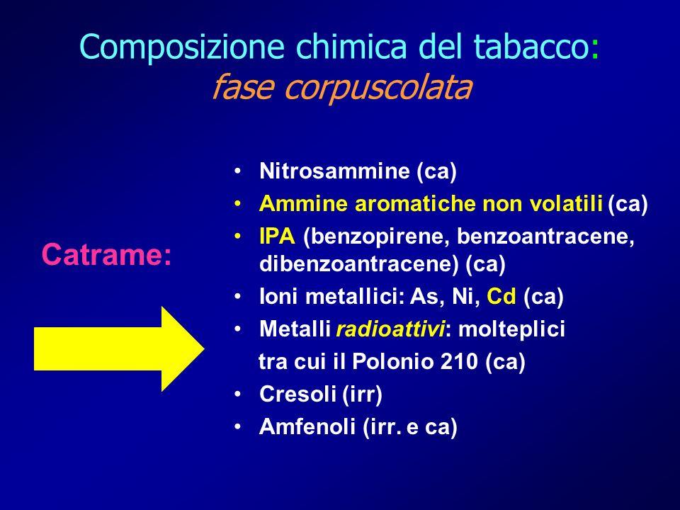 Catrame: Nitrosammine (ca) Ammine aromatiche non volatili (ca) IPA (benzopirene, benzoantracene, dibenzoantracene) (ca) Ioni metallici: As, Ni, Cd (ca