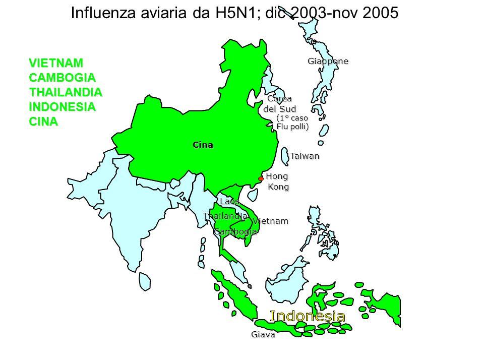VIETNAM CAMBOGIA THAILANDIA INDONESIA CINACina Corea del Sud Taiwan Hong Kong Kong Giava (1° caso Flu polli) Cina Vietnam Thailandia Cambogia Giappone