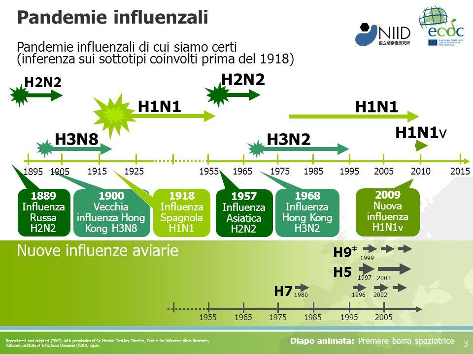 3 Pandemie influenzali H7 H5 H9 * 1980 1997 Nuove influenze aviarie 19962002 1999 2003 195519651975198519952005 H1N1 H2N2 1889 Influenza Russa H2N2 19