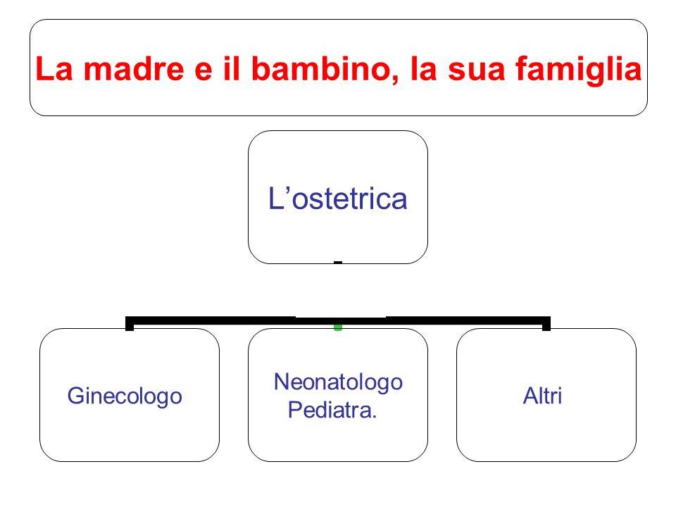 Lostetrica Ginecologo Neonatologo Pediatra. Altri La madre e il bambino, la sua famiglia