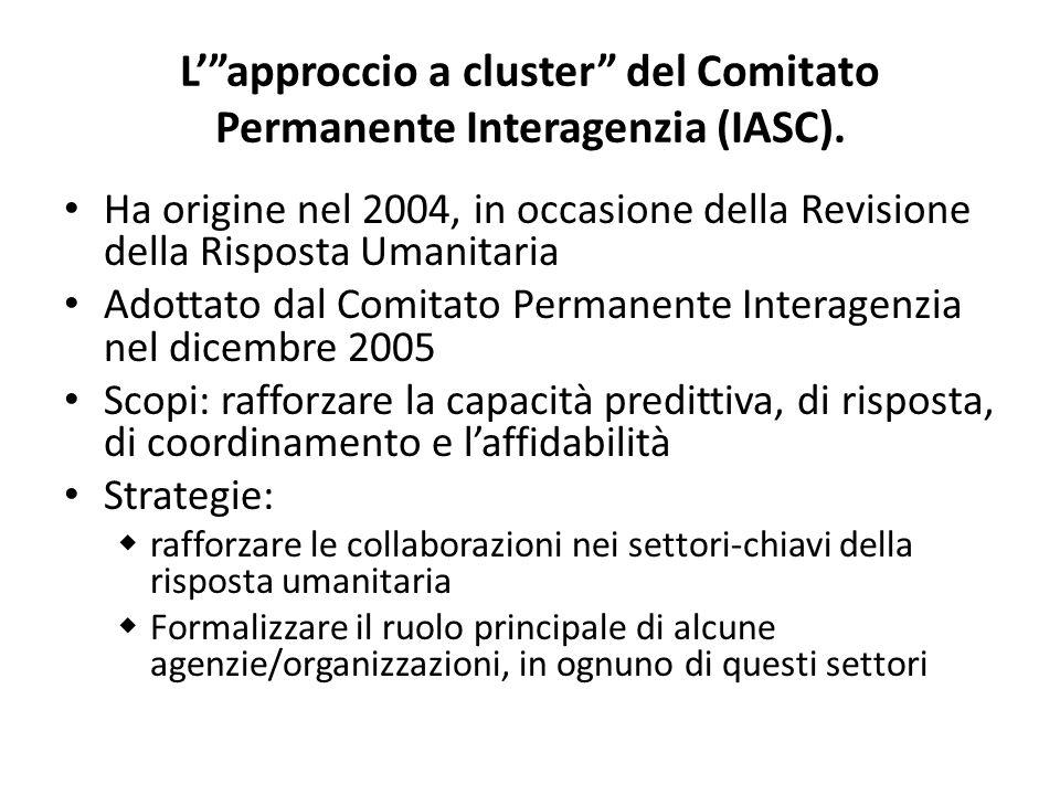 Lapproccio a cluster del Comitato Permanente Interagenzia (IASC).