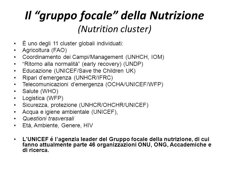 Il gruppo focale della Nutrizione (Nutrition cluster) È uno degli 11 cluster globali individuati: Agricoltura (FAO) Coordinamento dei Campi/Management (UNHCH, IOM) Ritorno alla normalità (early recovery) (UNDP) Educazione (UNICEF/Save the Children UK) Ripari demergenza (UNHCR/IFRC) Telecomunicazioni demergenza (OCHA/UNICEF/WFP) Salute (WHO) Logistica (WFP) Sicurezza, protezione (UNHCR/OHCHR/UNICEF) Acqua e igiene ambientale (UNICEF), Questioni trasversali Età, Ambiente, Genere, HIV LUNICEF é lagenzia leader del Gruppo focale della nutrizione, di cui fanno attualmente parte 46 organizzazioni ONU, ONG, Accademiche e di ricerca.