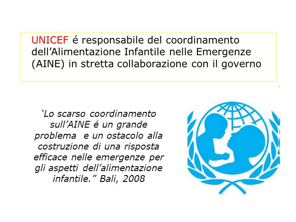 UNICEF é responsabile del coordinamento dellAlimentazione Infantile nelle Emergenze (AINE) in stretta collaborazione con il governo Lo scarso coordinamento sullAINE é un grande problema e un ostacolo alla costruzione di una risposta efficace nelle emergenze per gli aspetti dellalimentazione infantile.