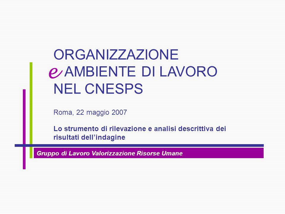 Gruppo di Lavoro Valorizzazione Risorse Umane Lo strumento di rilevazione e analisi descrittiva dei risultati dellindagine ORGANIZZAZIONE AMBIENTE DI