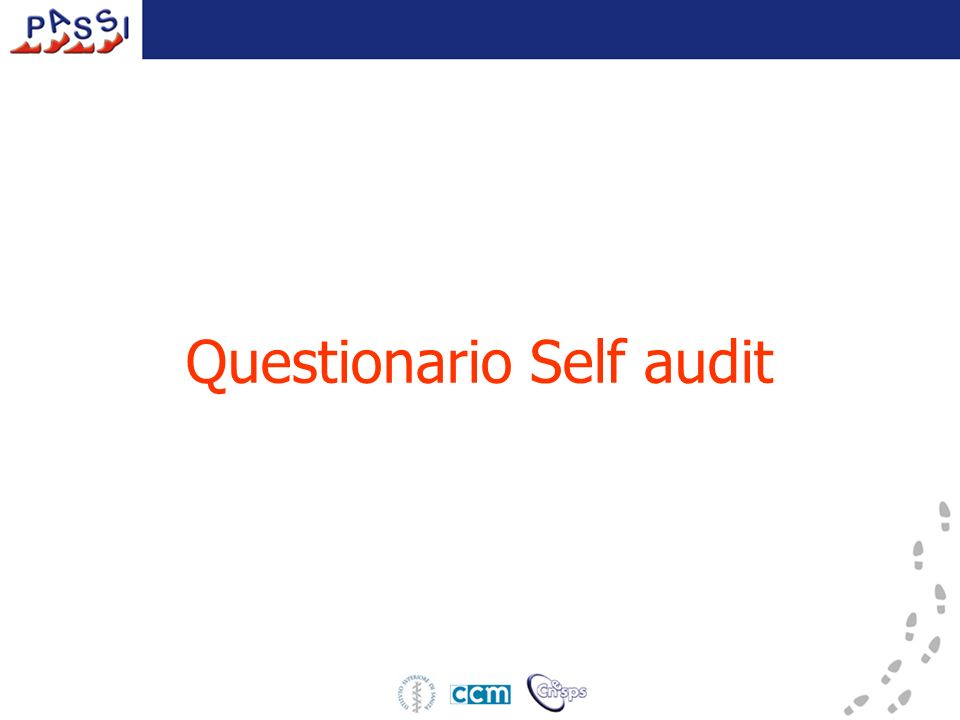 Questionario Self audit