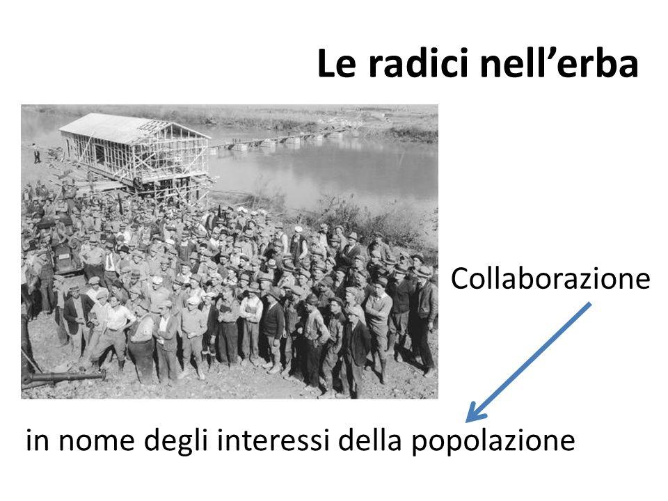 Le radici nellerba in nome degli interessi della popolazione Collaborazione