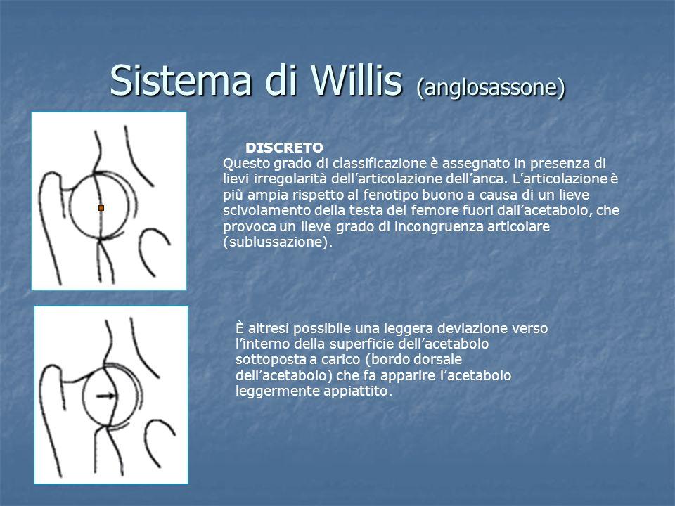 Sistema di Willis (anglosassone) DISCRETO Questo grado di classificazione è assegnato in presenza di lievi irregolarità dellarticolazione dellanca. La