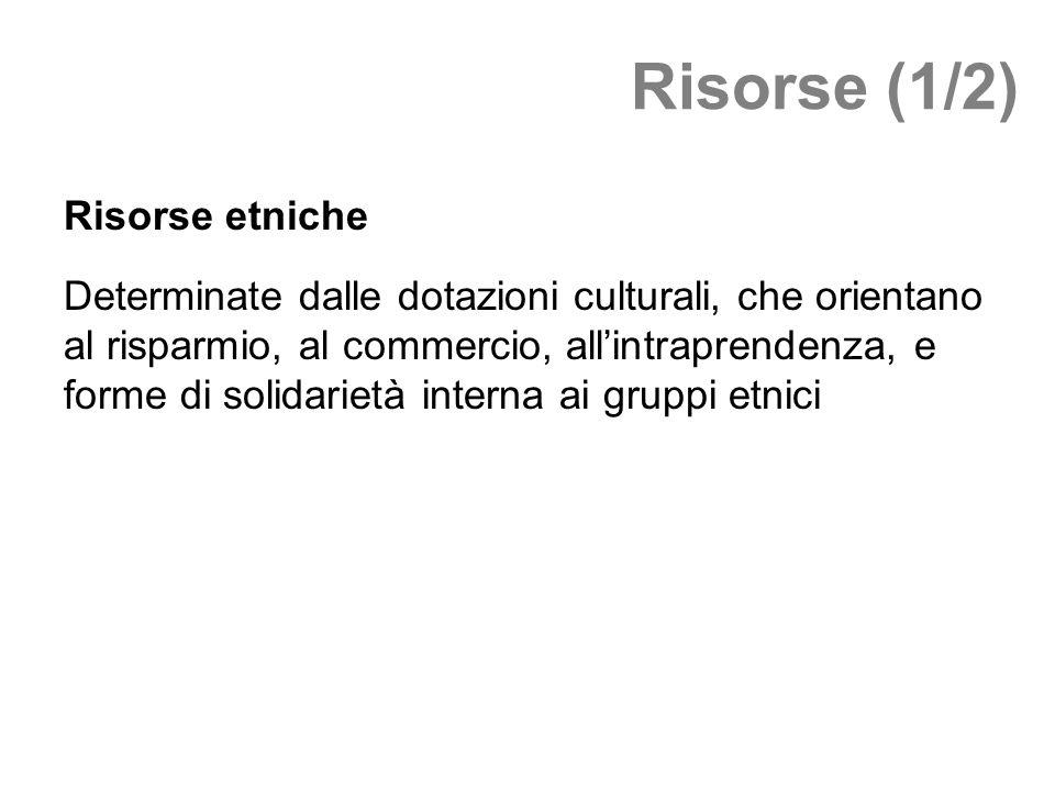 Risorse (1/2) Risorse etniche Determinate dalle dotazioni culturali, che orientano al risparmio, al commercio, allintraprendenza, e forme di solidarie
