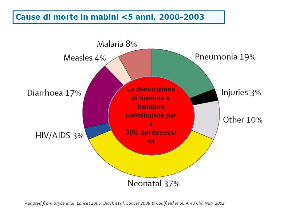UNDERNUTRITION underlies 53% of under five deaths La denutrizione di mamma e bambino contribuisce per il 35% dei decessi <5 Adapted from Bryce et al,