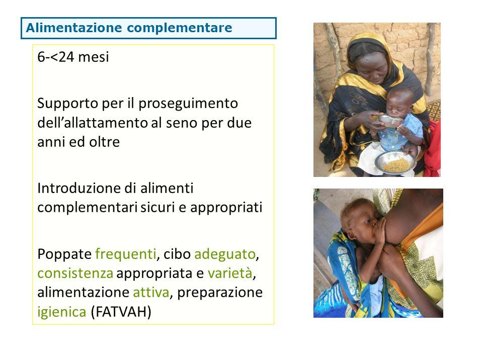 6-<24 mesi Supporto per il proseguimento dellallattamento al seno per due anni ed oltre Introduzione di alimenti complementari sicuri e appropriati Po