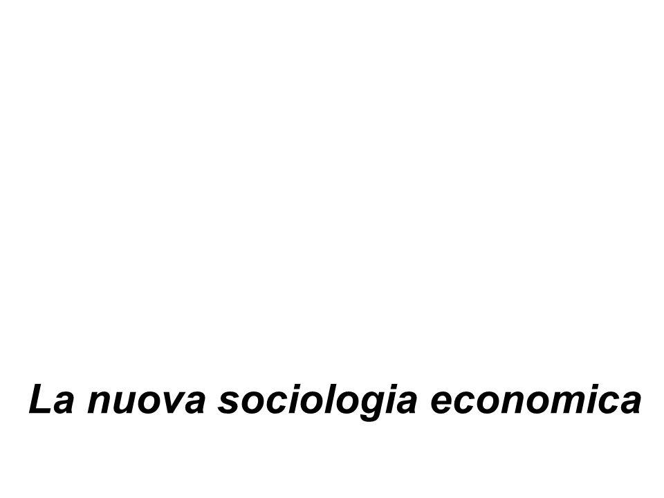 La nuova sociologia economica