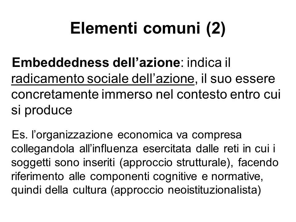 Elementi comuni (2) Embeddedness dellazione: indica il radicamento sociale dellazione, il suo essere concretamente immerso nel contesto entro cui si p