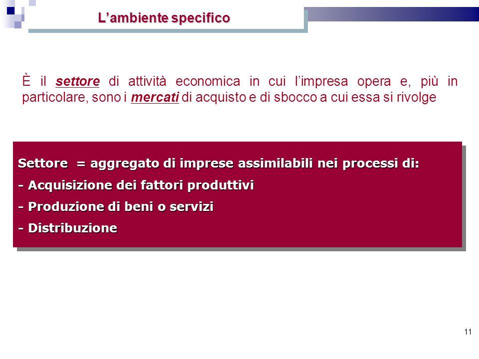 11 Lambiente specifico È il settore di attività economica in cui limpresa opera e, più in particolare, sono i mercati di acquisto e di sbocco a cui es