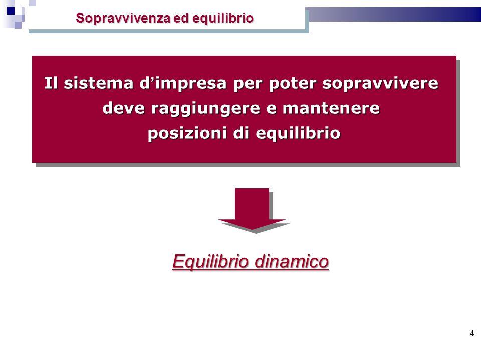 4 Equilibrio dinamico Il sistema d impresa per poter sopravvivere deve raggiungere e mantenere posizioni di equilibrio Il sistema d impresa per poter