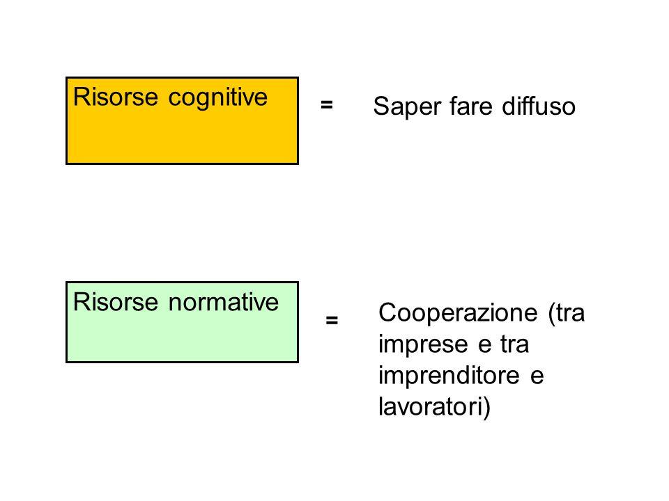 Risorse normative Cooperazione (tra imprese e tra imprenditore e lavoratori) Saper fare diffuso Risorse cognitive = =