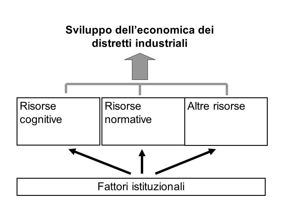 Risorse cognitive Fattori istituzionali Risorse normative Altre risorse Sviluppo delleconomica dei distretti industriali