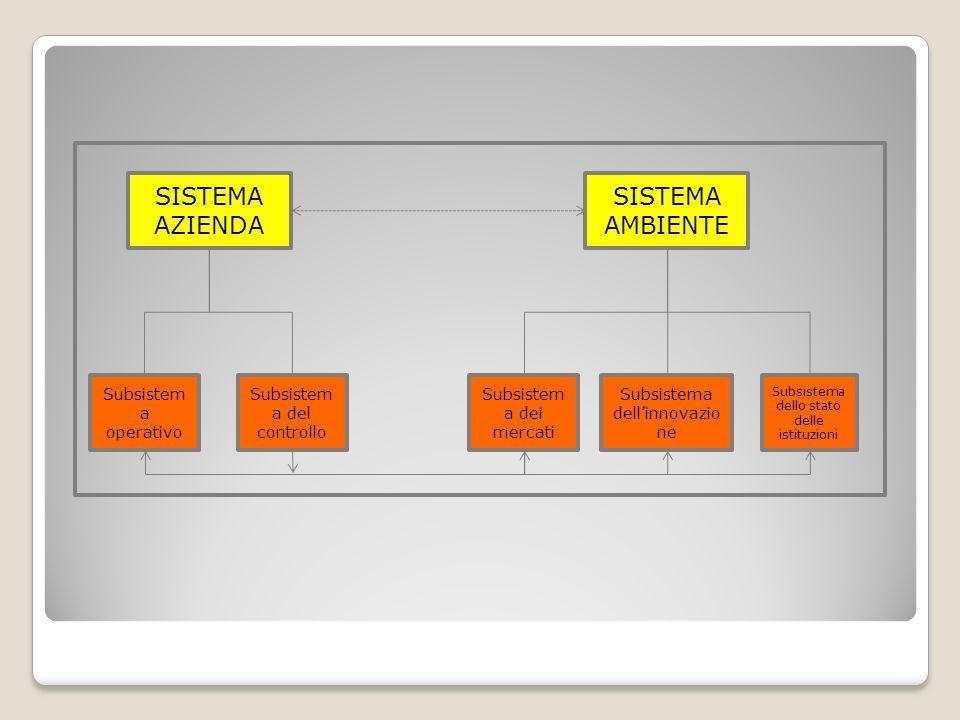 SISTEMA AMBIENTE SISTEMA AZIENDA Subsistem a dei mercati Subsistema dellinnovazio ne Subsistema dello stato delle istituzioni Subsistem a operativo Su