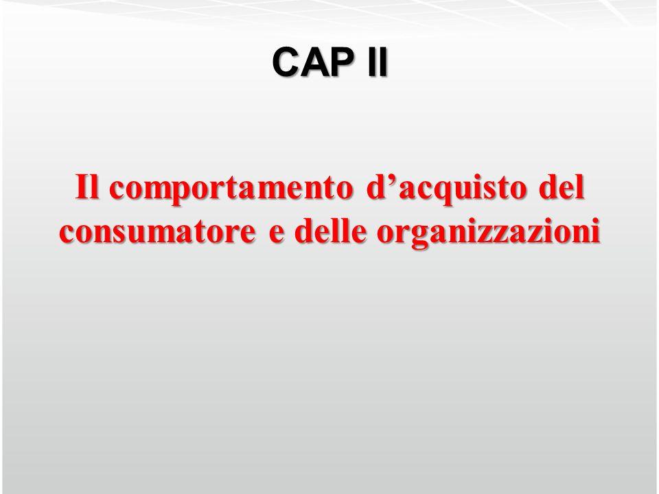 CAP II Il comportamento dacquisto del consumatore e delle organizzazioni