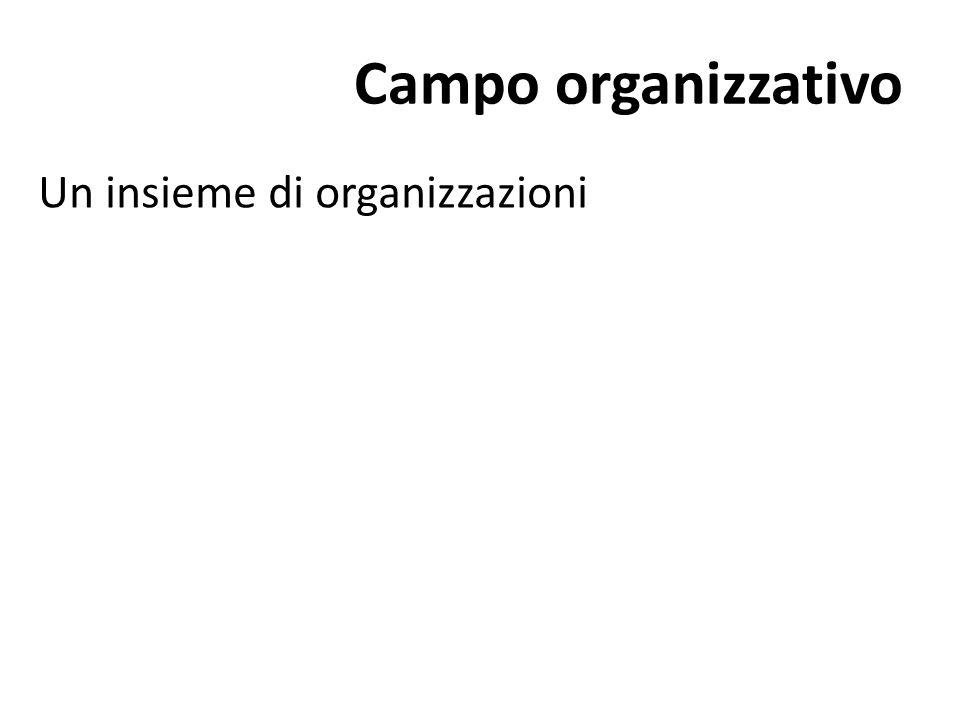 Campo organizzativo Un insieme di organizzazioni
