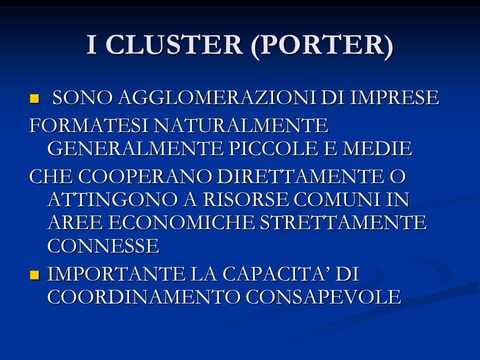 I CLUSTER (PORTER) SONO AGGLOMERAZIONI DI IMPRESE SONO AGGLOMERAZIONI DI IMPRESE FORMATESI NATURALMENTE GENERALMENTE PICCOLE E MEDIE CHE COOPERANO DIRETTAMENTE O ATTINGONO A RISORSE COMUNI IN AREE ECONOMICHE STRETTAMENTE CONNESSE IMPORTANTE LA CAPACITA DI COORDINAMENTO CONSAPEVOLE IMPORTANTE LA CAPACITA DI COORDINAMENTO CONSAPEVOLE