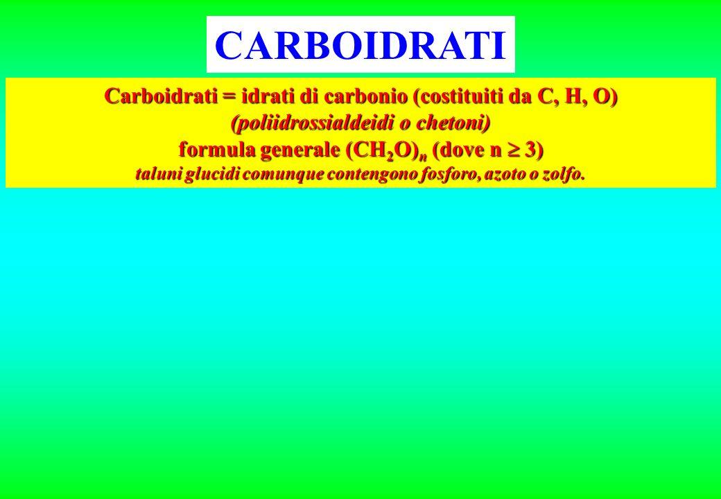 CARBOIDRATI Carboidrati = idrati di carbonio (costituiti da C, H, O) (poliidrossialdeidi o chetoni) formula generale (CH 2 O) n (dove n 3) taluni gluc