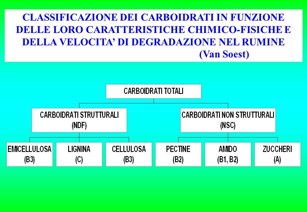 CLASSIFICAZIONE DEI CARBOIDRATI IN FUNZIONE DELLE LORO CARATTERISTICHE CHIMICO-FISICHE E DELLA VELOCITA DI DEGRADAZIONE NEL RUMINE (Van Soest)